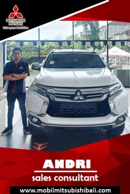 Mitsubishi Bali
